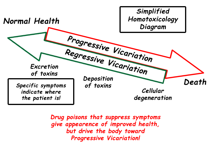 Homotoxicology diagram. As toxins go into the body they cause progressive vicariation and illness. To get well, toxins move be moved out body - this is called regressive vicariation